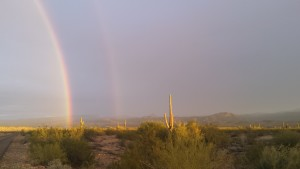 Rainbows in the desert