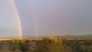 Rainbows in the desert